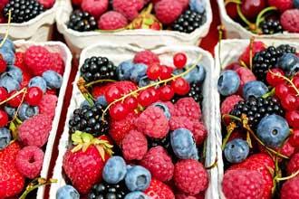 Restriction calorique et perte de poids induite par le régime alimentaire n'induisent pas le brunissement du tissu adipeux blanc sous-cutané